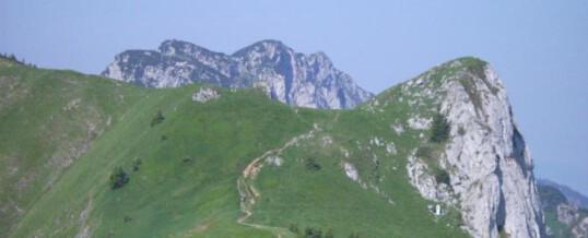 Wandertage in den bayerischen Bergen